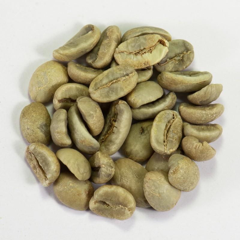 Кофе зеленый в зернах Никарагуа Марагоджип (ОРИГИНАЛ), арабика Gardman (Гардман): фото - Gardman™