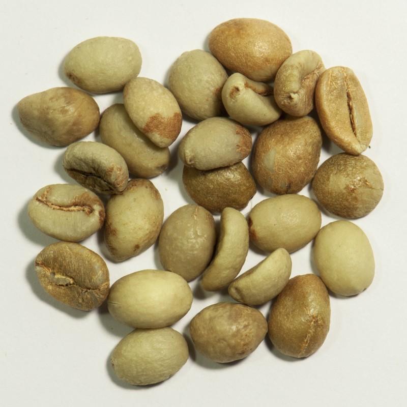 Кофе зеленый в зернах Индия Парчмент (ОРИГИНАЛ), робуста Gardman (Гардман): фото - Gardman™