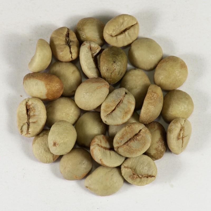 Кофе зеленый в зернах Индия Парчмент Копи Роял 19 (ОРИГИНАЛ), робуста Gardman (Гардман): фото - Gardman™